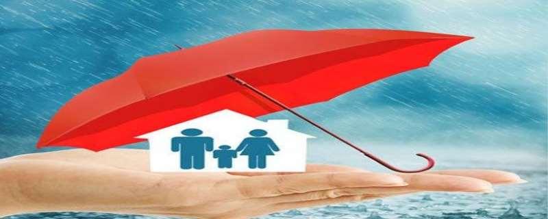 保险退保需要什么材料